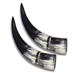 "Steer Horns - Large Polished Pairs, 10""-14"""