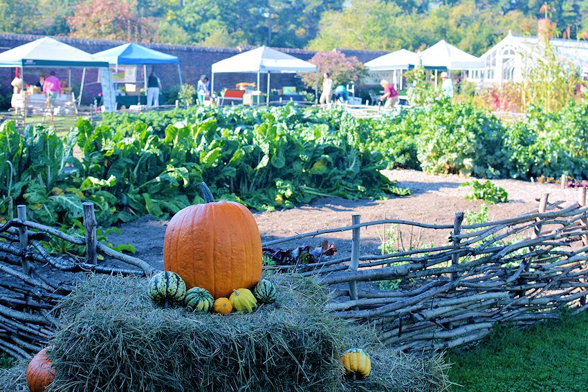 Fort Ticonderoga Heritage Harvest and Horse Festival