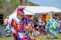 Low Country Pow Wow And Cultural Festival